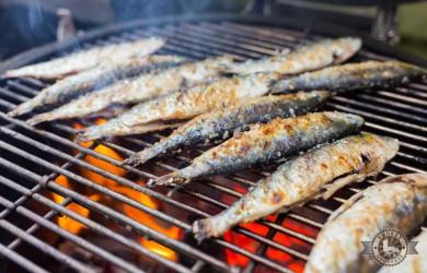 Gegrilde sardines