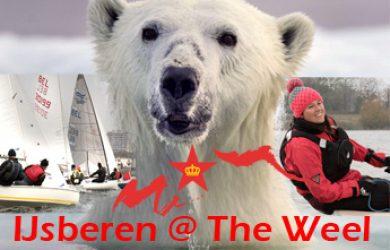 IJsberen @ The Weel